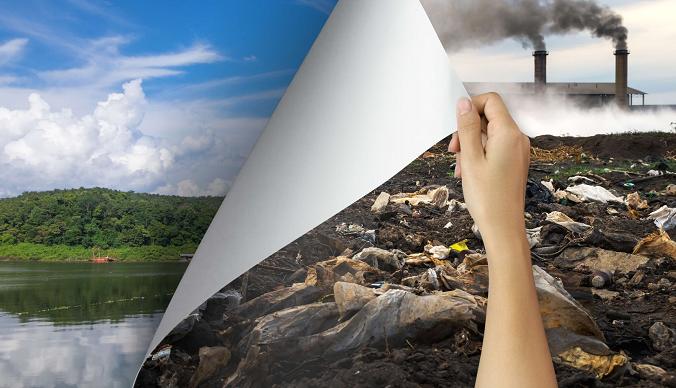 أوراق الجدران صديقة للبيئة